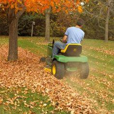 Tipps zur Rasenpflege im Herbst # Pflege # Fall # Rasen # Tipps # Pflege # Fall # Rasen # Tipps Fall Lawn Care, Lawn Care Tips, Autumn Flowering Plants, Fall Plants, Design Thinking, Pergola Pictures, Garden Edging, Walk In The Woods, Pergola Shade