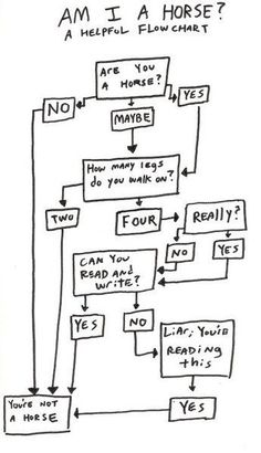 Horse Flow Chart. Hilarious for all of you who really truly wish you were a horse!