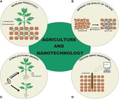 #Nanotechnology in #Agriculture: Which #Innovation Potential Does It Have? https://adalidda.net/posts/xDnDeK3XTzgN8Pam2/nanotechnology-in-agriculture-which-innovation-potential