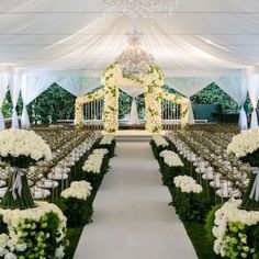 White drapes tent wedding with green hedge and white rose decor chuppah gold chairs chandeliers Wedding Ceremony Ideas, Tent Wedding, Mod Wedding, Ceremony Decorations, Garden Wedding, Wedding Venues, Dream Wedding, Elegant Wedding, Wedding Ceremonies