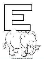 Alfabeto degli animali. Ogni lettera dell'alfabeto è da colorare unitamente a un animale il cui nome ha l'iniziale come la lettera stessa. Utilizzabile in prima elementare come nell'ultimo anno di asilo.