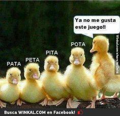 New memes en espanol hermanas 42 Ideas Spanish Jokes, New Memes, Relationship Memes, Funny Faces, Funny Kids, Funny Photos, Troll, I Laughed, Hilarious