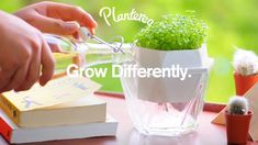 Plantereo: Grow Differently