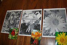 Flower photo paintings