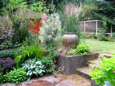 Tia's garden in Washington   Fine Gardening
