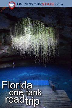 Travel | Florida | Attractions | USA | East Coast | Road Trips | Bucket List | Things To Do | Places To Visit | Day Trips | Beautiful Places | Vacations | Weekend Getaway | Hidden Gems | Places To Eat | Delicious | Food | Restaurants | Tasty | Devil's Den | Waterfalls | Natural Wonders | Outdoor | Nature | Adventure | State Parks | Summer | Weeki Wachee | Cities