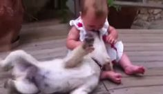 Baby And Dog Friendship