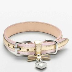 So cute, dog collar.