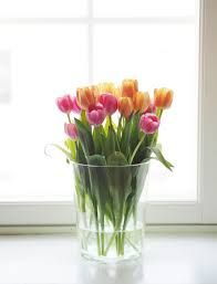 Pink and orange tulips Tulips, Glass Vase, Sweet Home, Lily, Watercolor, Small Things, Orange, Spring, Flowers