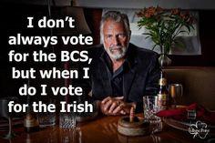 Votes for the Irish