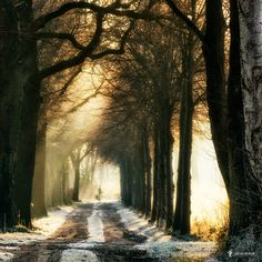 Waiting by Lars van de Goor on500px  )