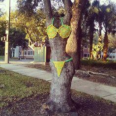 A Florida winter!! #yarnbomb