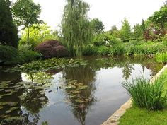 Spectacular Garten Kipp