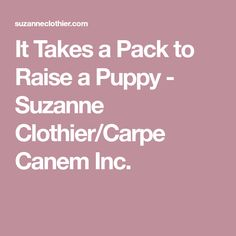 It Takes a Pack to Raise a Puppy - Suzanne Clothier/Carpe Canem Inc.