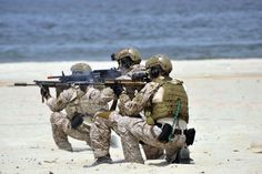 VIRGINIA BEACH, Va. (July 21, 2012) Navy SEALs participate in the capabilities exercise portion of the 43rd annual Underwater Demolition Team (UDT)-Sea, Air and Land (SEAL) East Coast Reunion at Joint Expeditionary Base Little Creek-Fort Story.