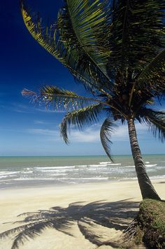 Cherating Beach, Pahang, Malaysia. Can go visit turtle sanctuary, relaxing at the beach & watch firefly at night at Yak Yah.