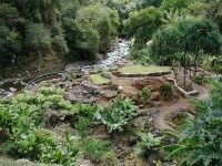 picture of ʻĪao Valley State Monument