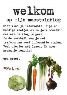 www.moestuinier.nl | slakken bestrijden in je moestuin - www.moestuinier.nl