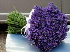 Beautiful Bouquet Of Lavender. Lavender Crafts, Lavender Wreath, Lavender Bouquet, Lavender Scent, Lavender Flowers, Lavender Cottage, Lavender Garden, French Lavender, Lavender Blue