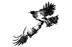 Ink drawing of an eagle soaring