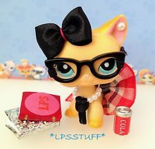 Littlest Pet Shop Accessories Clothes Nerd School Outfit LPS CAT NOT INCLUDED