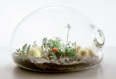 Great instructions for making your own terrarium here...it only takes a few simple materials and some imagination. :)