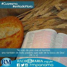 """""""No sólo de pan vive el hombre, sino también de toda palabra que sale de la boca de Dios"""" (Mt. 4, 4)"""