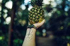 Putting pineapples on the top of the world.