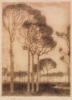 Trees on the edge of the Oranjewoud by Jan Mankes, etching Landscape Drawings, Landscape Art, Landscape Paintings, Art Drawings, Dutch Painters, Encaustic Art, Dutch Artists, Museum Of Modern Art, Tree Art