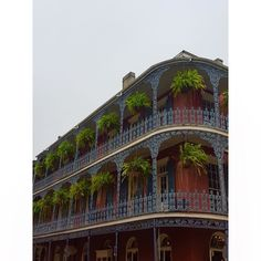 - DETAILS - #3 #memories  #travel #love #family  #neworleans  #vacation #visiting #instatravel #architect #architecture #trip #holiday #photooftheday #fun #travelling #tourism #tourist #instapassport #instatraveling #mytravelgram #travelgram  #black #style #details #frenchquarter by andresarreguin