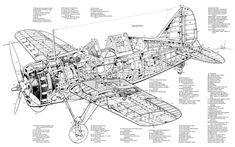 Brewster F2A3 Buffalo 1941 cutaway