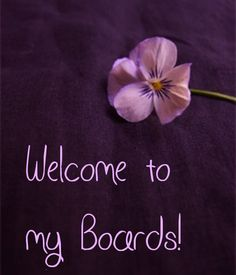 Thanks for accepting my invite and/or visiting. I have no pin limits so feel free to pin or share as many as you like. Thanks again and God bless. Welcome Boards, All Things Purple, Shades Of Purple, Etiquette, Pansies, As You Like, Blessed, Thankful, Invitations