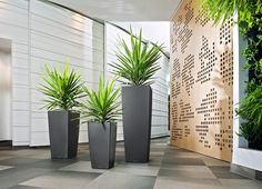 Veradek is the best place for outstanding outdoor and indoor planters. Here, you can browse your favorite outdoor planters and also commercial planters at best price. Tall Planters, Patio Planters, Planter Pots, Modern Planters, Commercial Planters, Fiberglass Planters, Self Watering Planter, Office Plants, Small Space Gardening