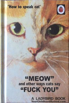 You Funny, Really Funny, Funny Cats, Funny Shit, Vintage Funny Quotes, Sarcasm Meme, Wild Book, Ladybird Books, Funny Memes