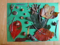 Nature Walk Assemblage!  Art project for kids!