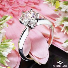 Classic 6 Prong Solitaire Engagement Ring.