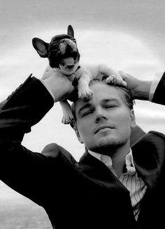 Bouledogue français / French bulldog - Leonardo Di Caprio with Frenchie Leonardo Dicaprio News, Hot Men, Hot Guys, Beautiful Men, Beautiful People, Pretty People, Foto Art, Actors, Look At You