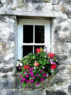 A dressed up window.....
