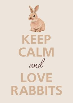Keep Calm & Love Rabbits #keepcalmandloverabbits www.gmichaelsalon...  @Emmie Darland I loovvee this!! Thanks for sharing!