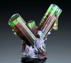 Bicolor tourmaline from Brazil