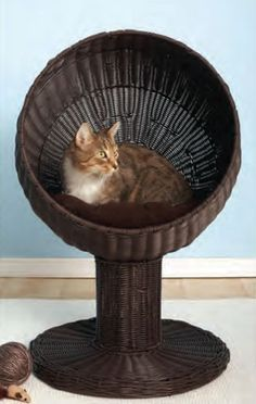 "Let your cat lounge in style. The Kitty Ball Bed gives your cat a large comfortable bed that's off the ground but easy to get into. Size 17""w x 28""h Materials and Care - Includes soft machine washable"