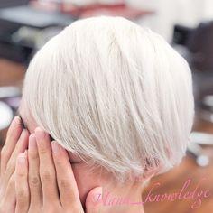 #ヘアカラー #派手髪 #ブリーチ1回 #ホワイトヘア #ホワイトブリーチ #ハイトーンカラー White Blonde, Hare, Hair Goals, Hair Color, Haircolor, Bunny, Hair Dye, Hair Coloring, Rabbits