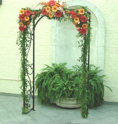 Beautiful Arch of Gerbera Daisies
