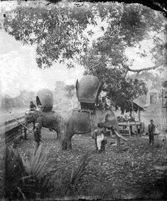 1877 Bangkok by John Thomson | via: TeakDoor.com - The Thailand Forum