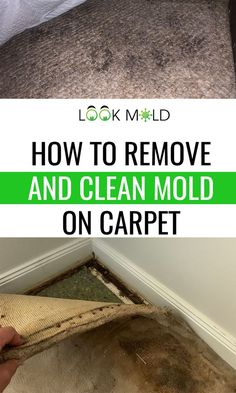 Carpet can cause you to get sick by housing mold spores and fragments which can become airborne. Knowing when the remove carpet and clean carpet can save you from getting sick. Learn the secrets Cleaning Carpet Stains, Cleaning Mold, House Cleaning Tips, Cleaning Hacks, Rug Cleaning, Domestic Cleaning, Get Rid Of Mold, What To Use