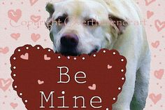 Dog Valentine's Day Card Labrador Says Be Mine by overthefenceart, $5.00