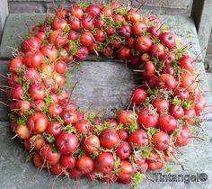Wreath with Malus apples - diy Flower Decorations, Christmas Decorations, Holiday Decor, Diy Wreath, Door Wreaths, Apple Wreath, Easy Hobbies, Southern Christmas, Decoration Inspiration