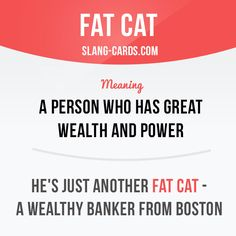 """Fat cat"" means a person who has great wealth and power. Example: He's just another fat cat - a wealthy banker from Boston."