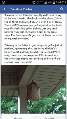 Simple Life Hacks, Useful Life Hacks, Organic Gardening, Gardening Tips, Porches, Garden Pests, The Ranch, Pest Control, Things To Know