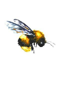 Image result for vintage bees flying